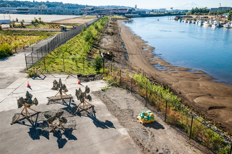 PLANT 2015 art installation at Boeing Plant 2 on the Duwamish River. Photos by Tim McGuire courtesy Boeing Co.