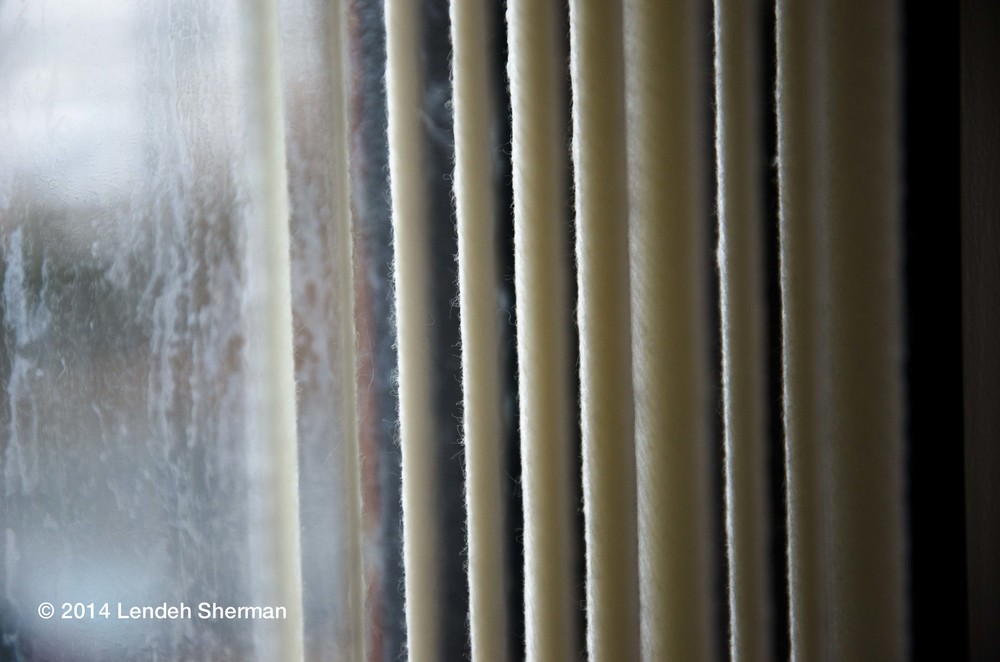 Photo of the day, February 4th: Blinds