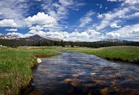 Tensleep creek (photo courtesy of Dave Stoetzel), Big Horn National Forest