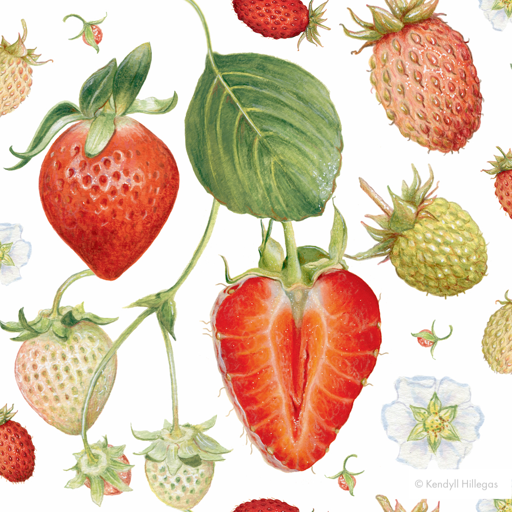 Strawberry Pattern.jpg
