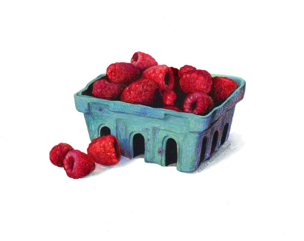 Farmer's Market Raspberries Illustration