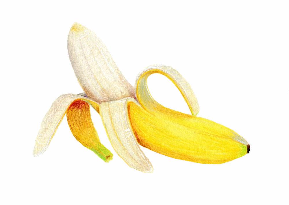 Peeled Banana Illustration