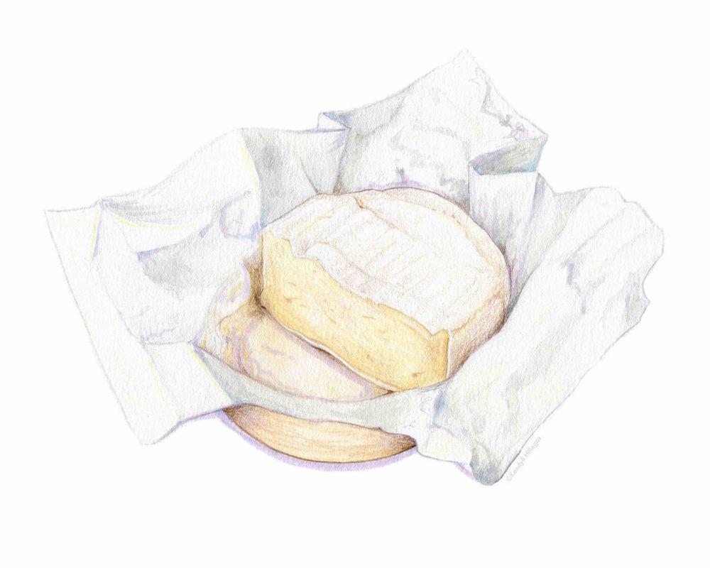 Brie Illustration