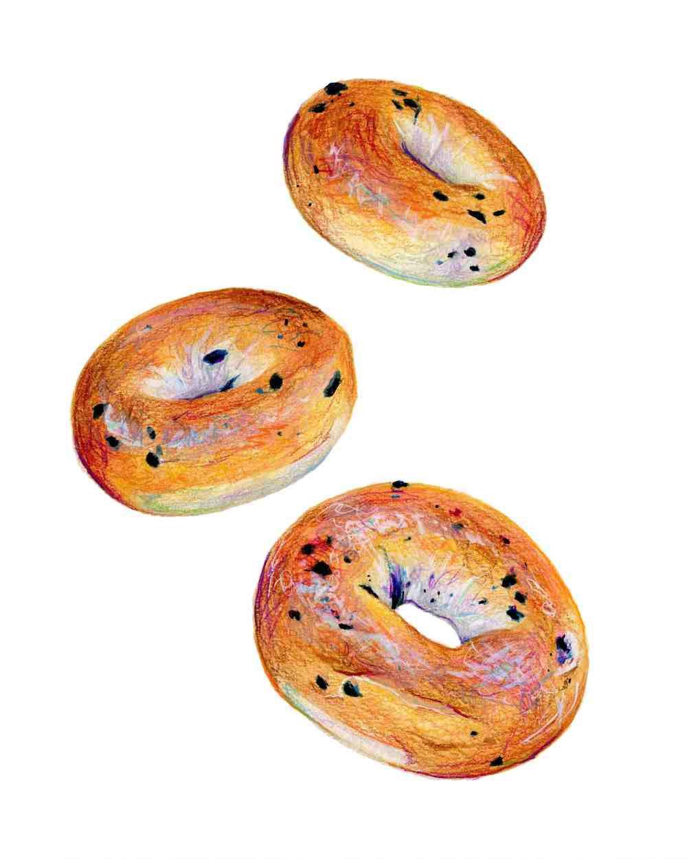 Blueberry Bagels Illustration