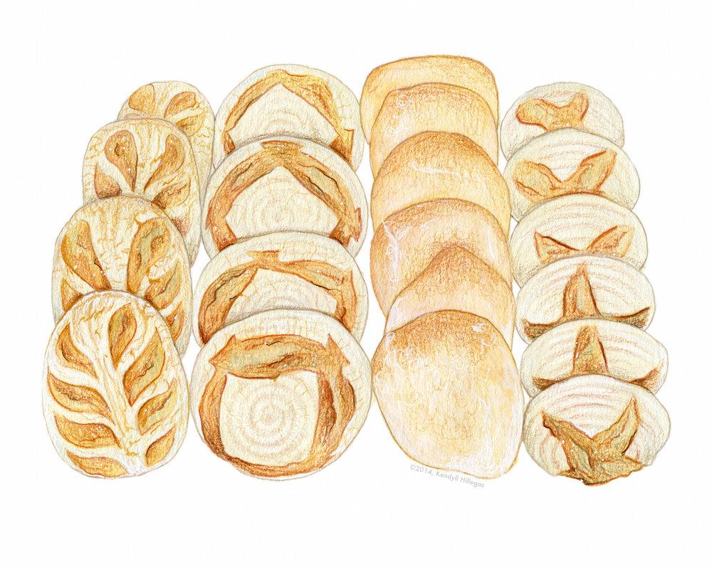 Artisan Bread Loaves Illustration