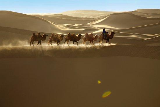 khongor sand dunes.jpg
