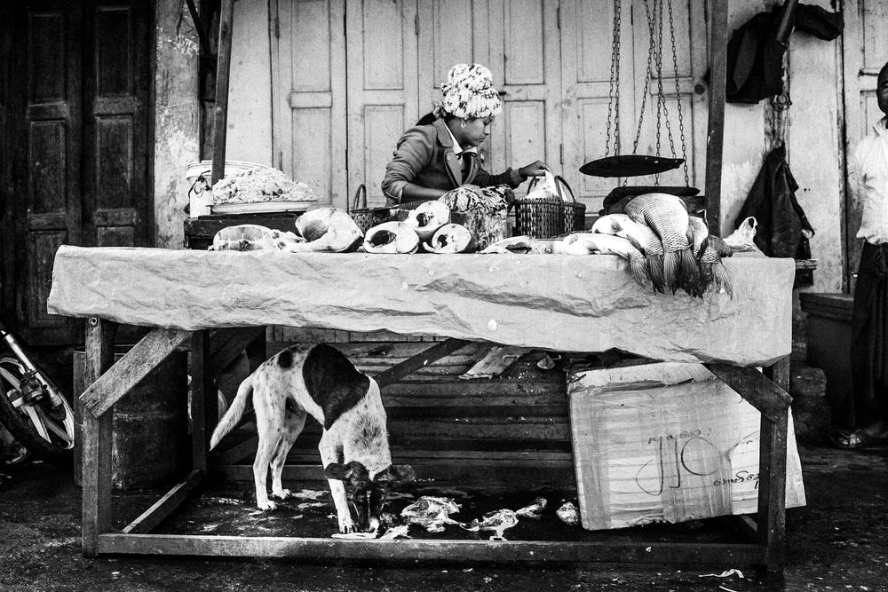 Life in Burma _-3.jpg