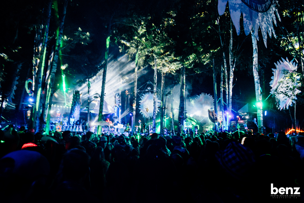 The Fractal Forest at Shambhala, Photo by Michael Benz
