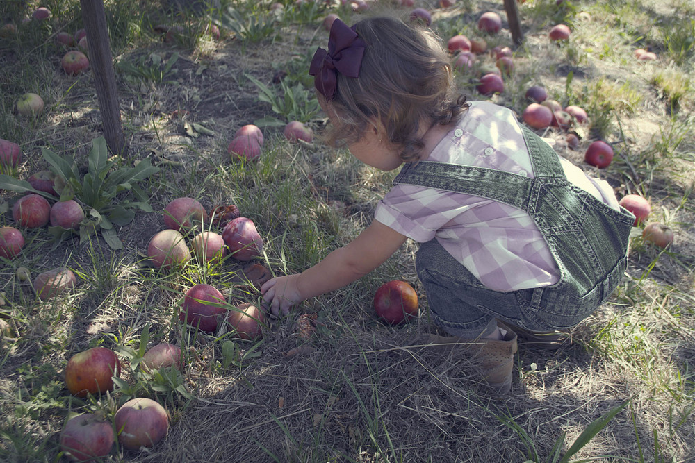 6.apple.jpg