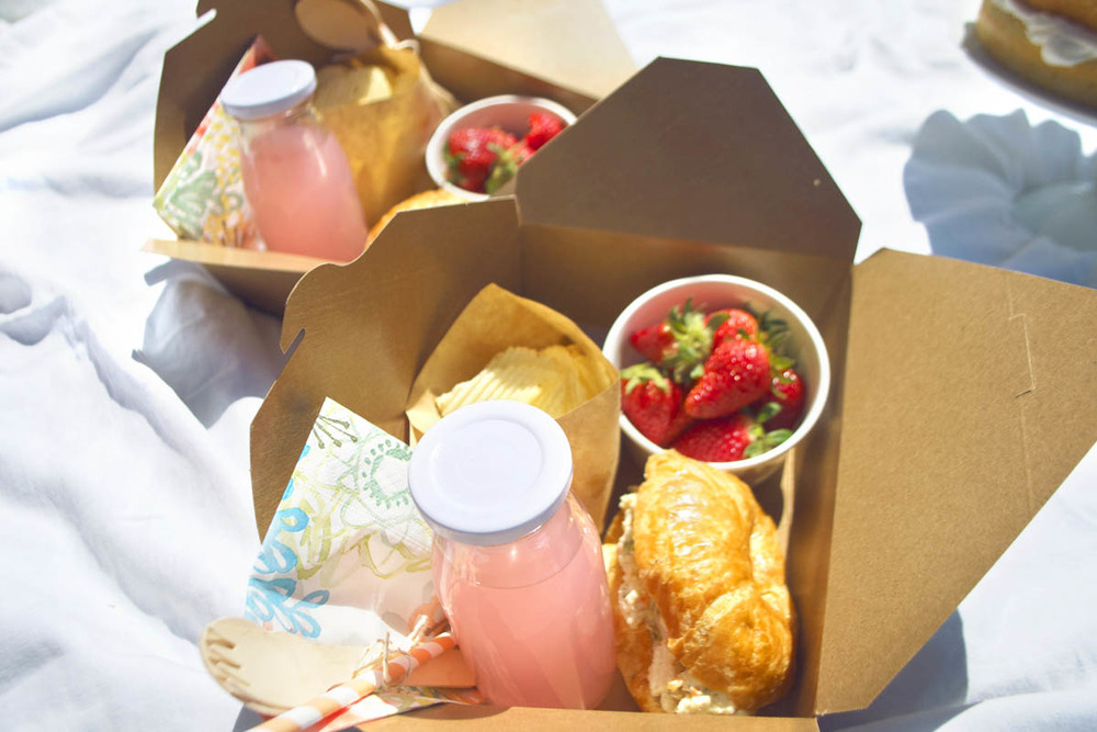 brown box picnic lunches