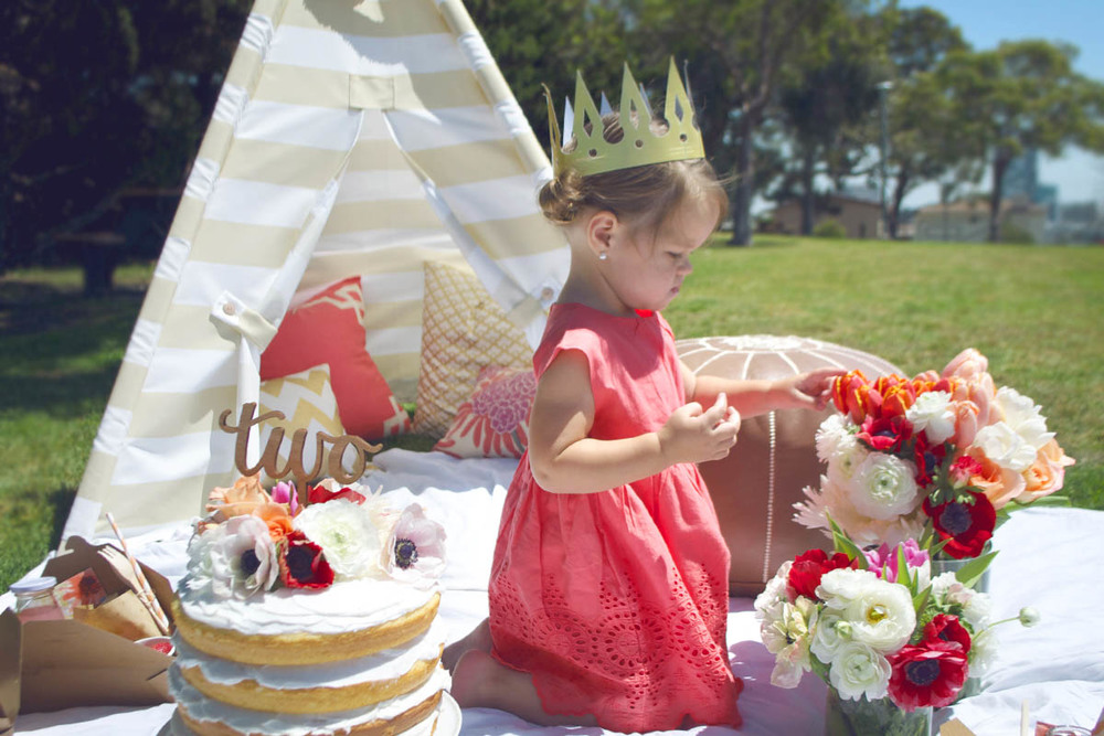 princess birthday picnic