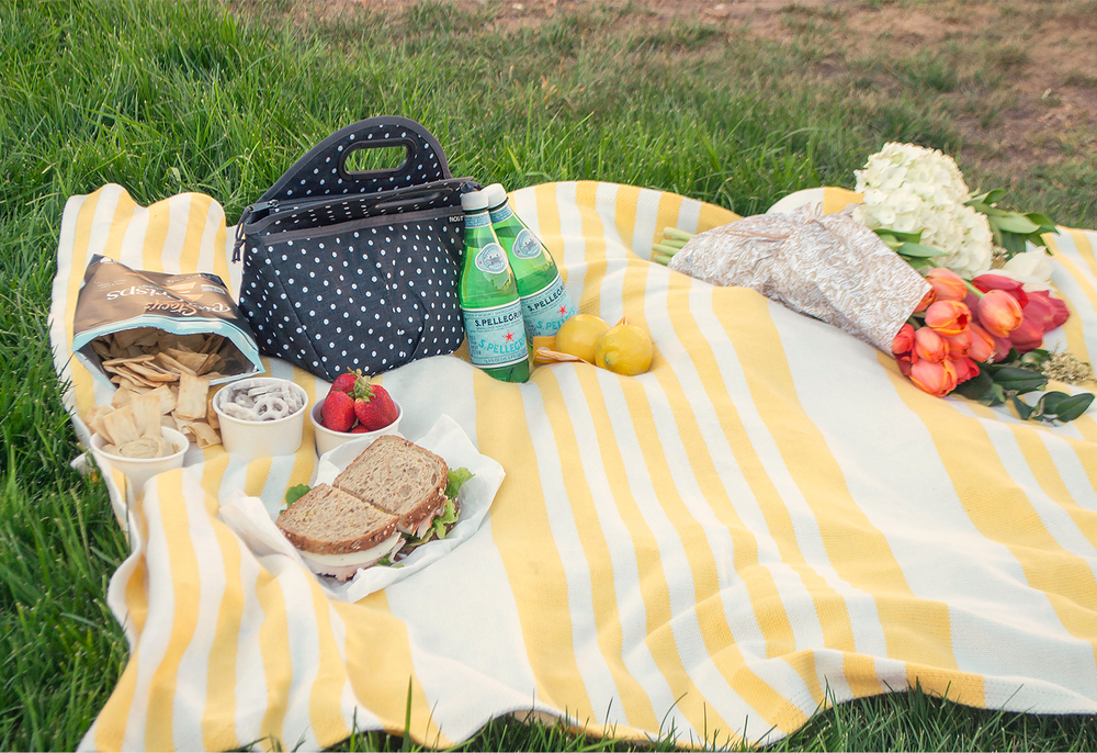 picnic-10.jpg