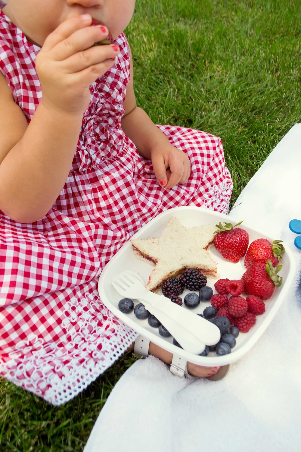 fourth of July picnic