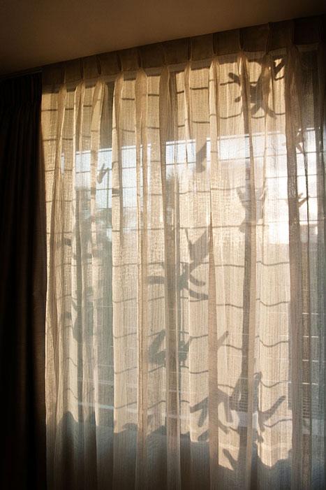 BEDROOM 1 WINDOW