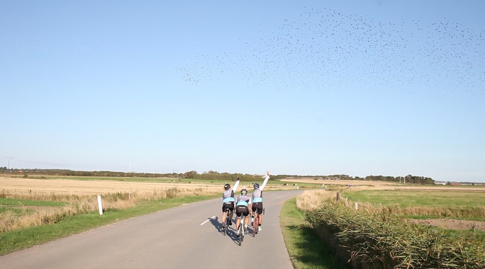 That was just after we started in Büsum. Birds are saying goodbye RAD PACK! Pic taken by Etienne Heinrich.