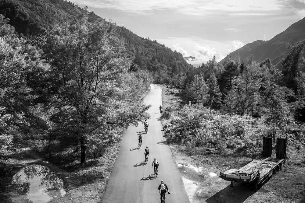 TDF_2017_Christoph-Steinweg_Stage3_A8A3220.jpg