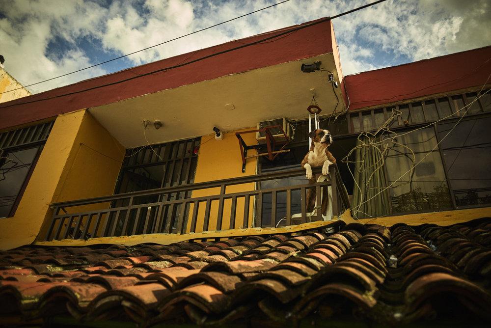 LOWRES-RADRACE-COLUMBIA-2018-CARLOS-4937.jpg