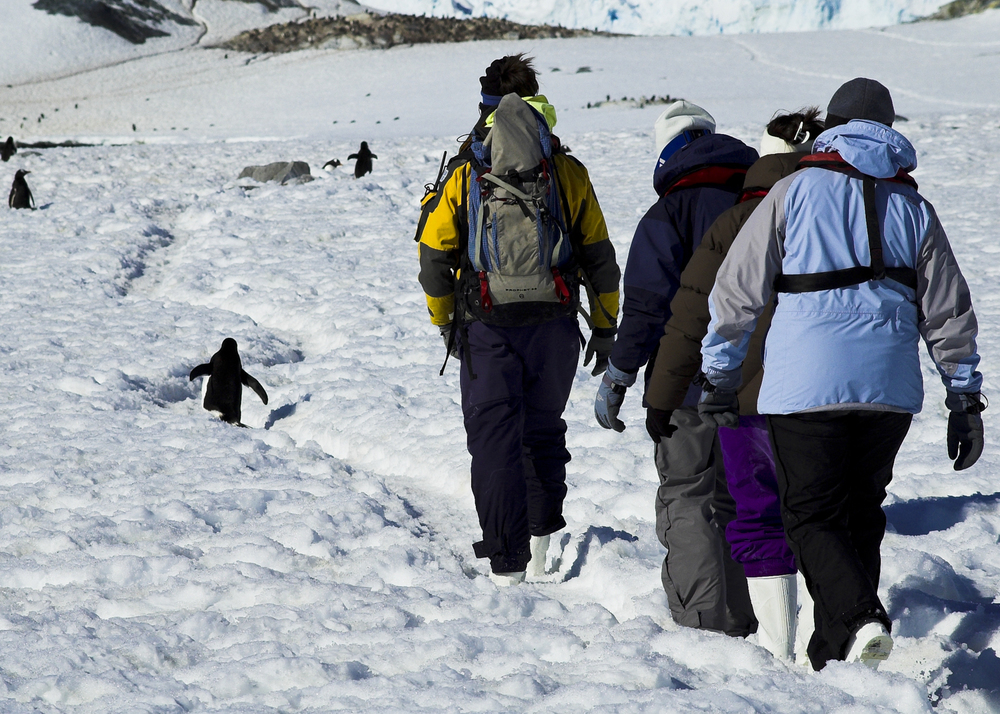 Antártida_04.jpg