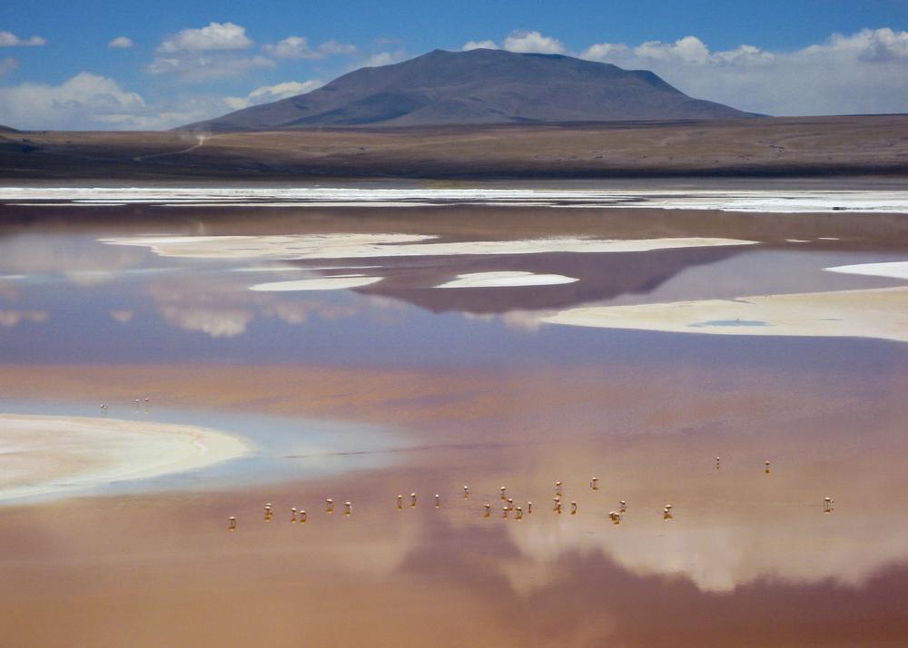 Bolivia_03.jpg