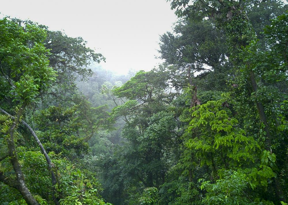 Costa Rica_01.jpg