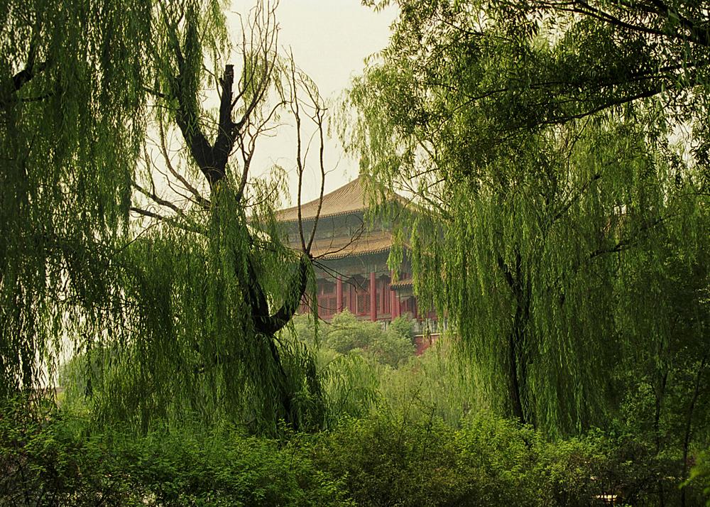 China_01.jpg