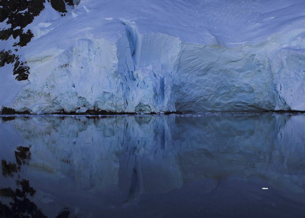Antártida COM FLOR.jpg