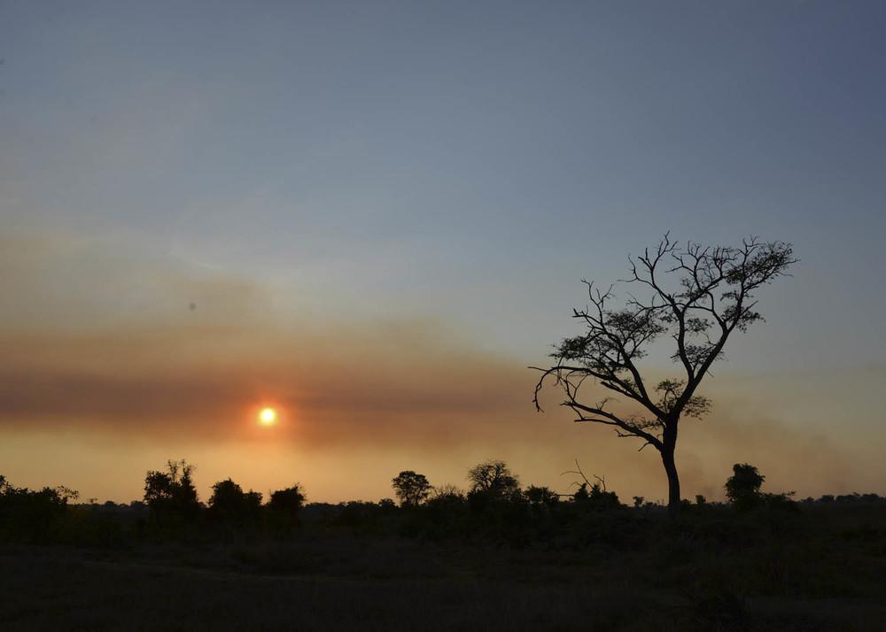 Botswana POSTA SOL ABRE.jpg