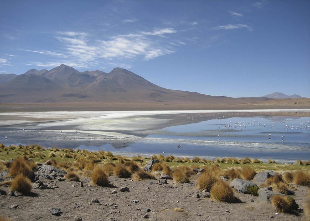 Bolivia_07.jpg