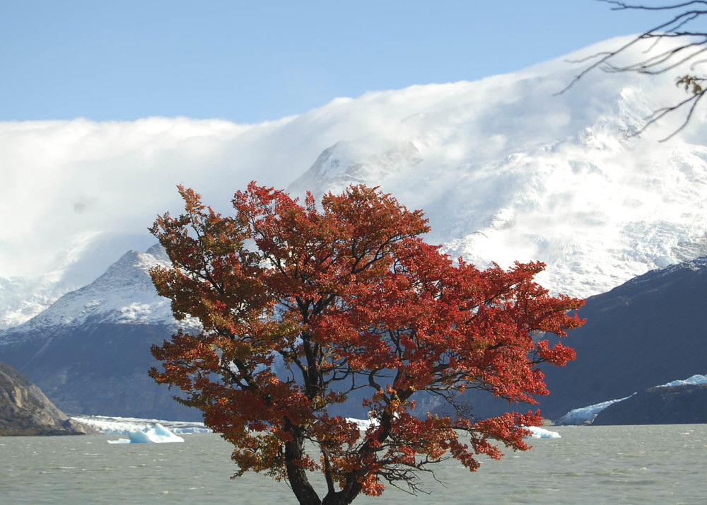 Argentina_16.jpg
