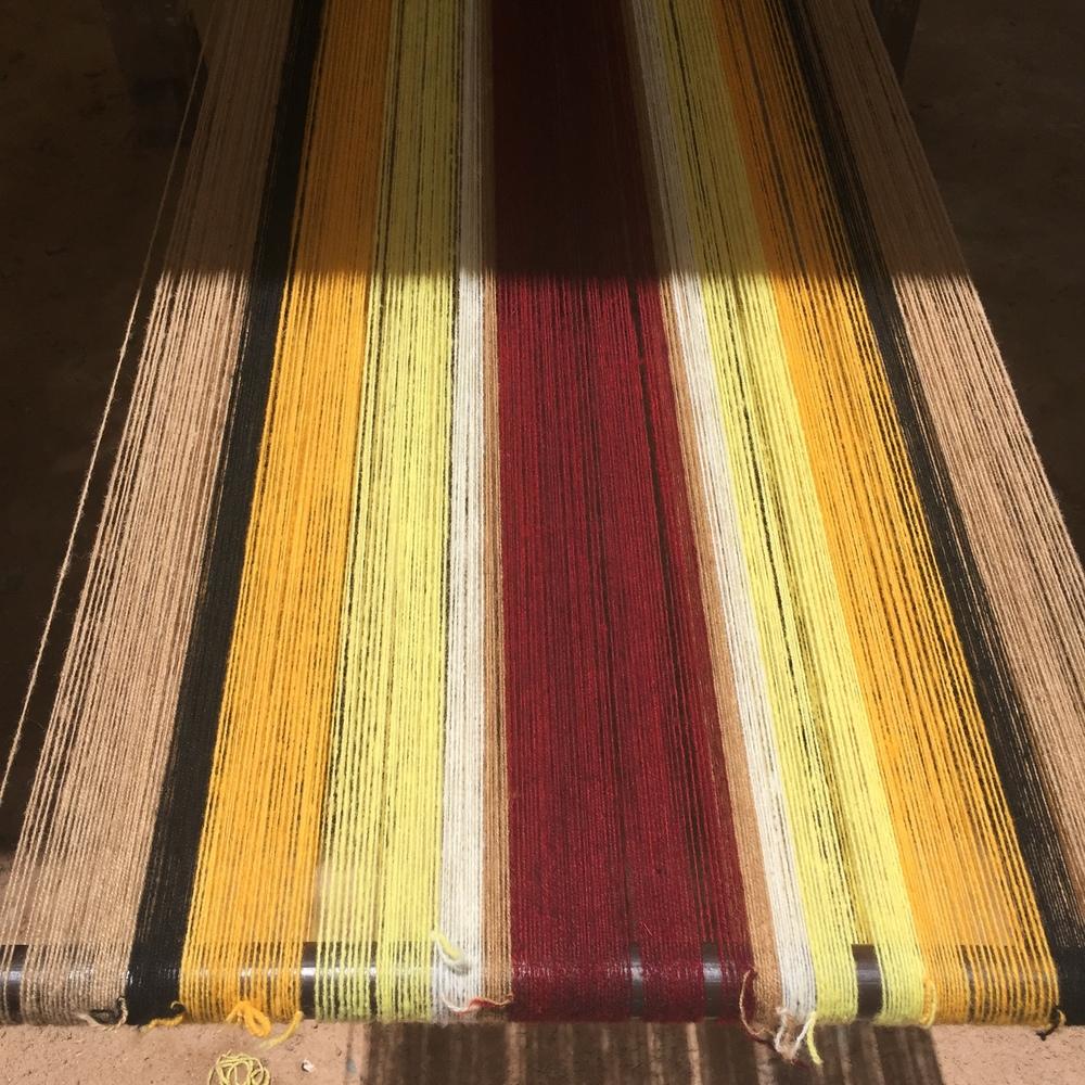 Des fils de laine de Vicuña,séchés après leur teinture naturelle !
