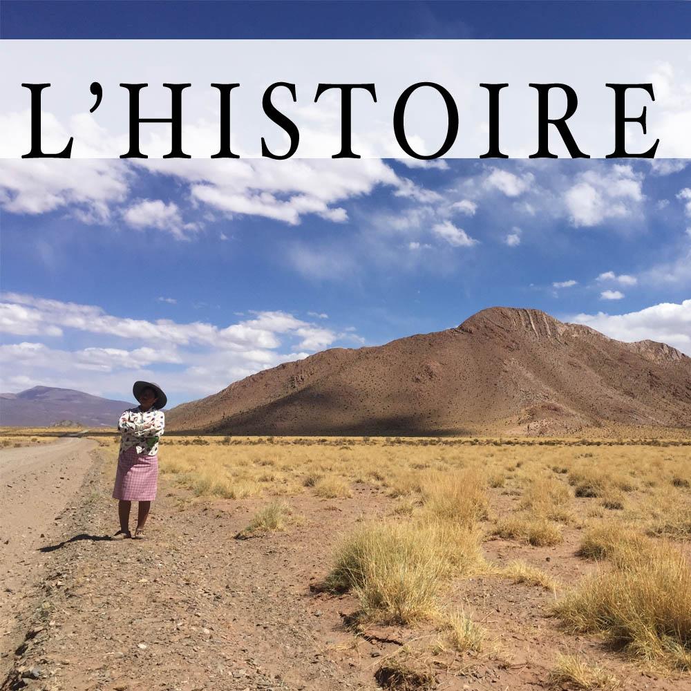 Histoire Sacs Laïta