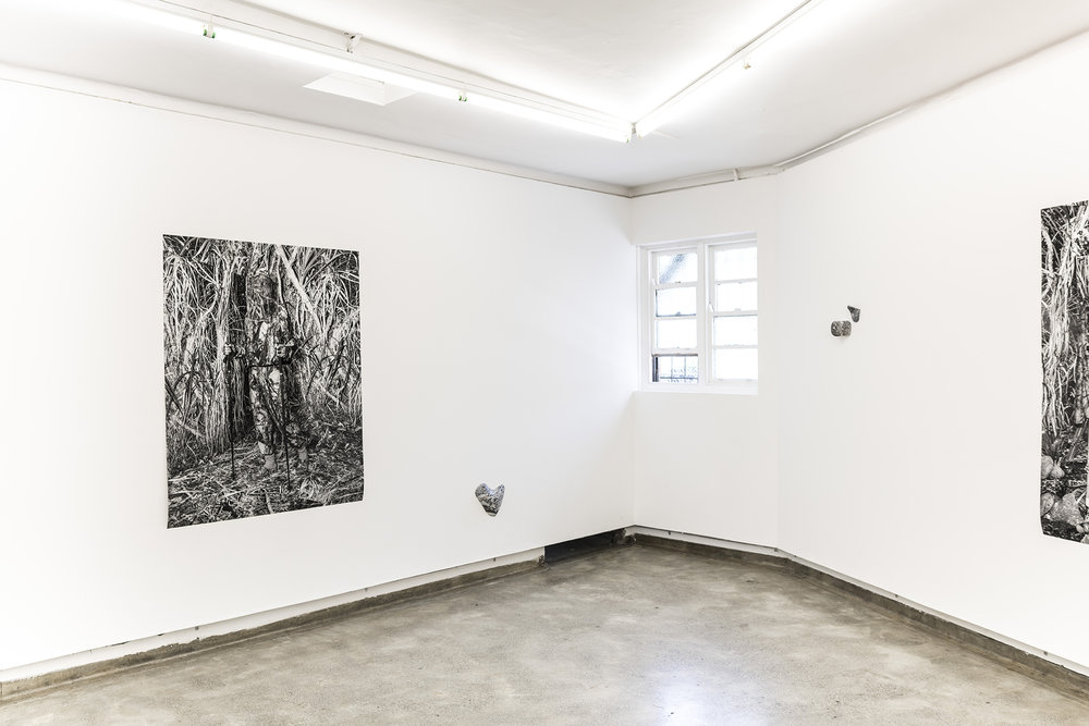 Installation view: 'Climb, grip, hold,' Firstdraft 2019.