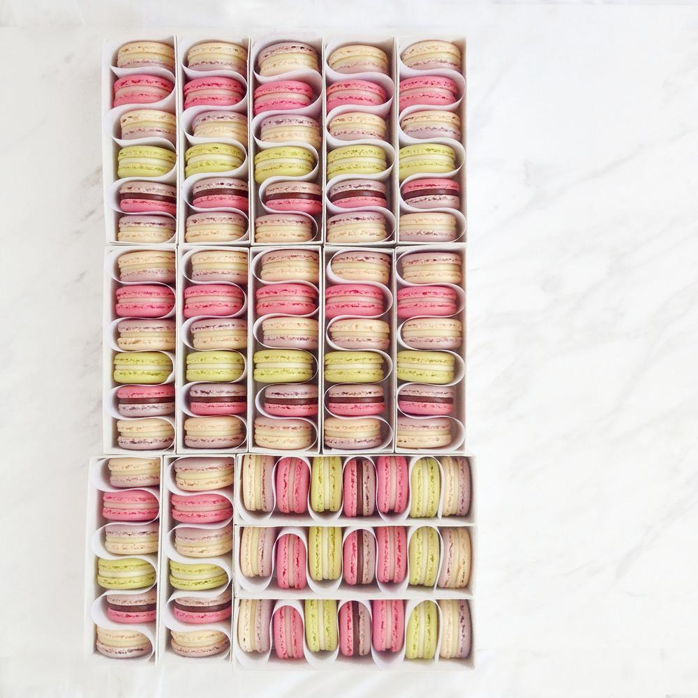 #engnatalie macaron production