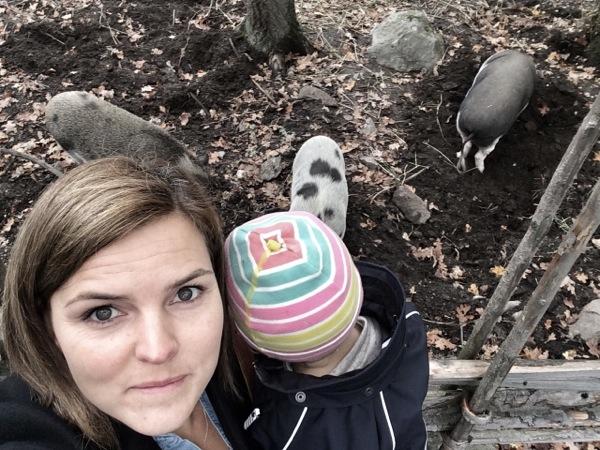 Mamman, Majken och grisarna på Skansen.