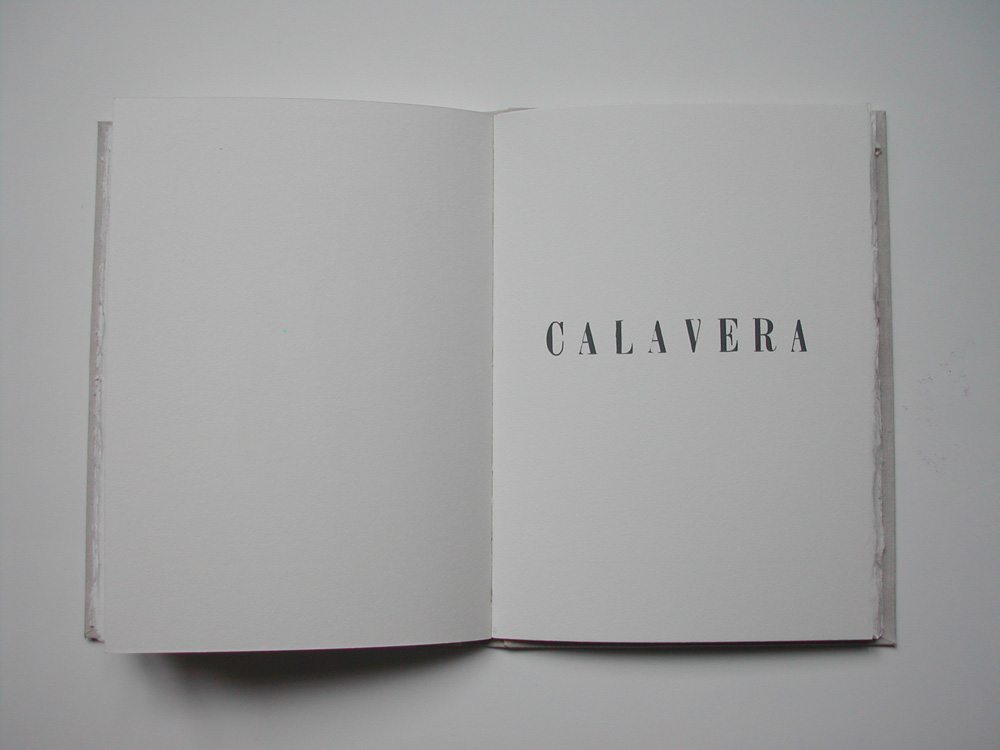 27. Untitled Calavera (text).jpg