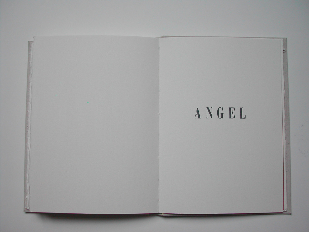 30. Untitled Angel (text).jpg