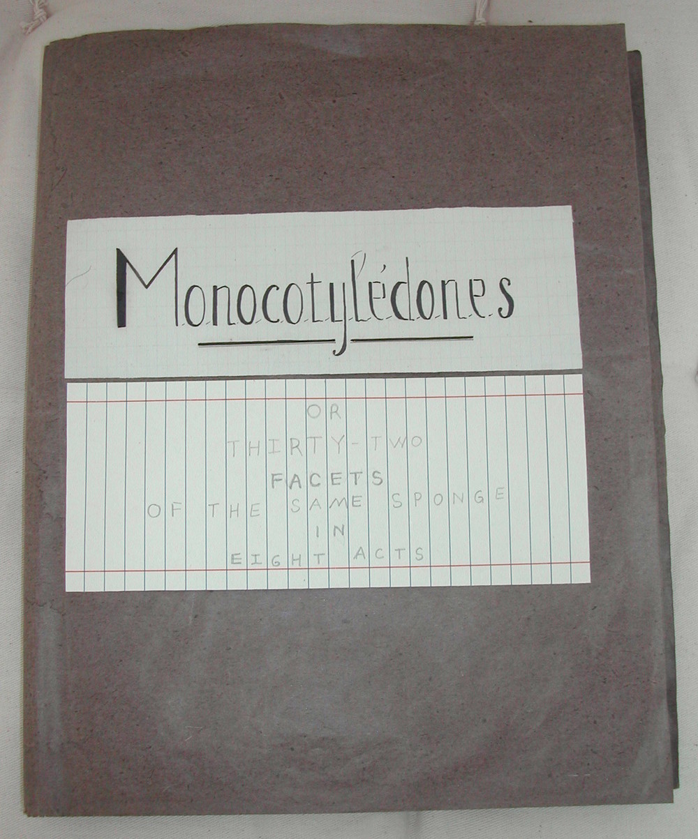 Monocotyledones - 01 web.jpg