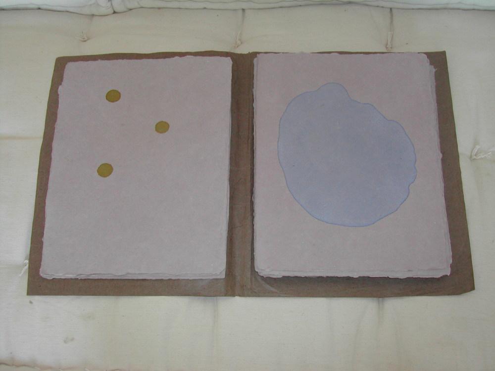 Monocotyledones - 06.jpg