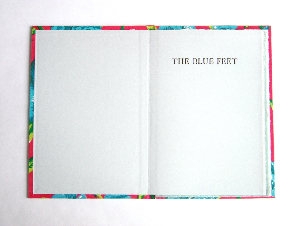 02. The Blue Feet title page.jpg