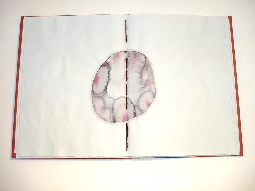 04. pp 5-6.jpg