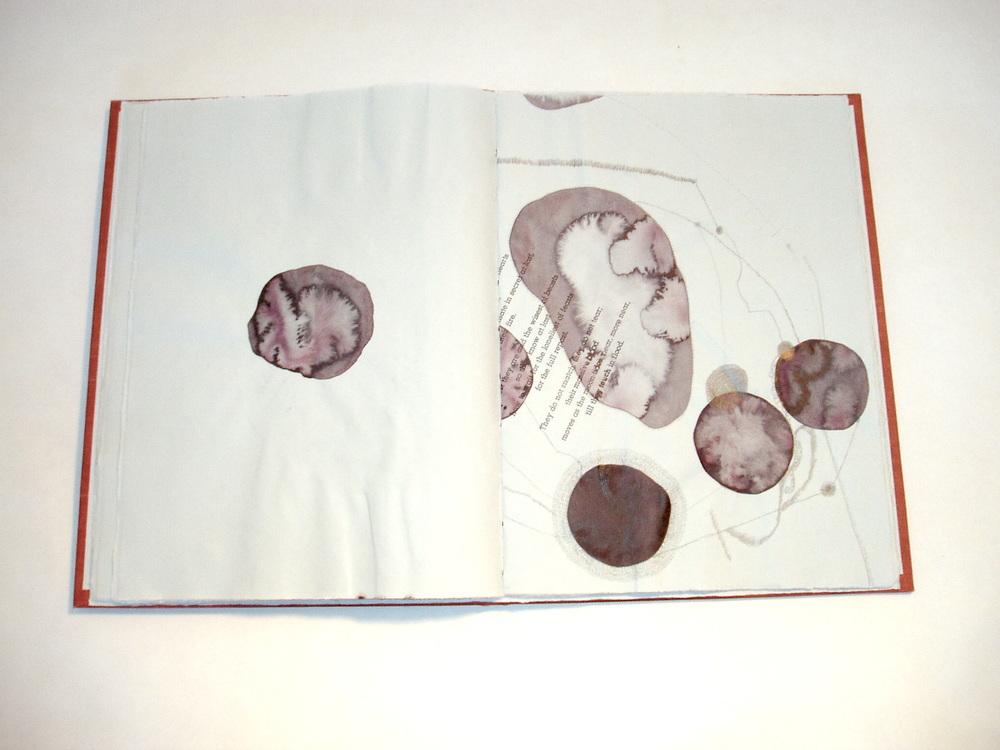07. pp 11-12.jpg