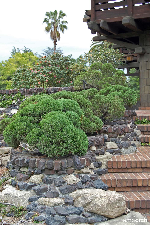 Gamble House - exterior garden planting