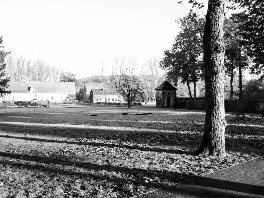 Summer ∙ Abdij Vlierbeek, Kessel-Lo