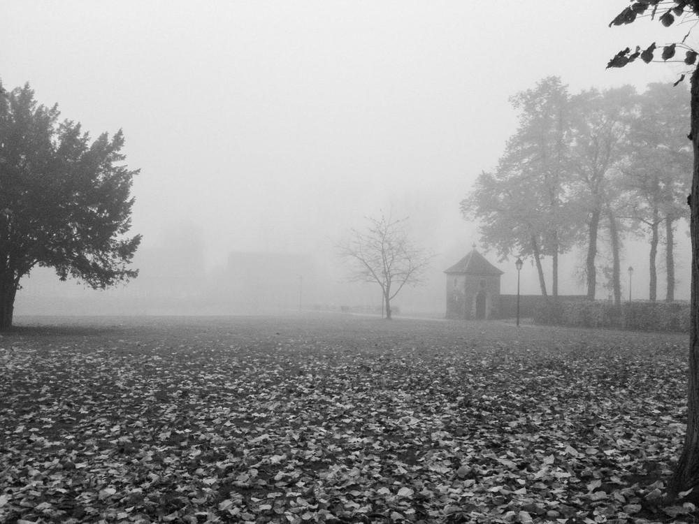 Autumn ∙ Abdij Vlierbeek, Kessel-Lo