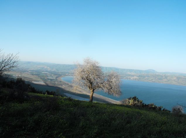 Looking at the Sea of Galilee
