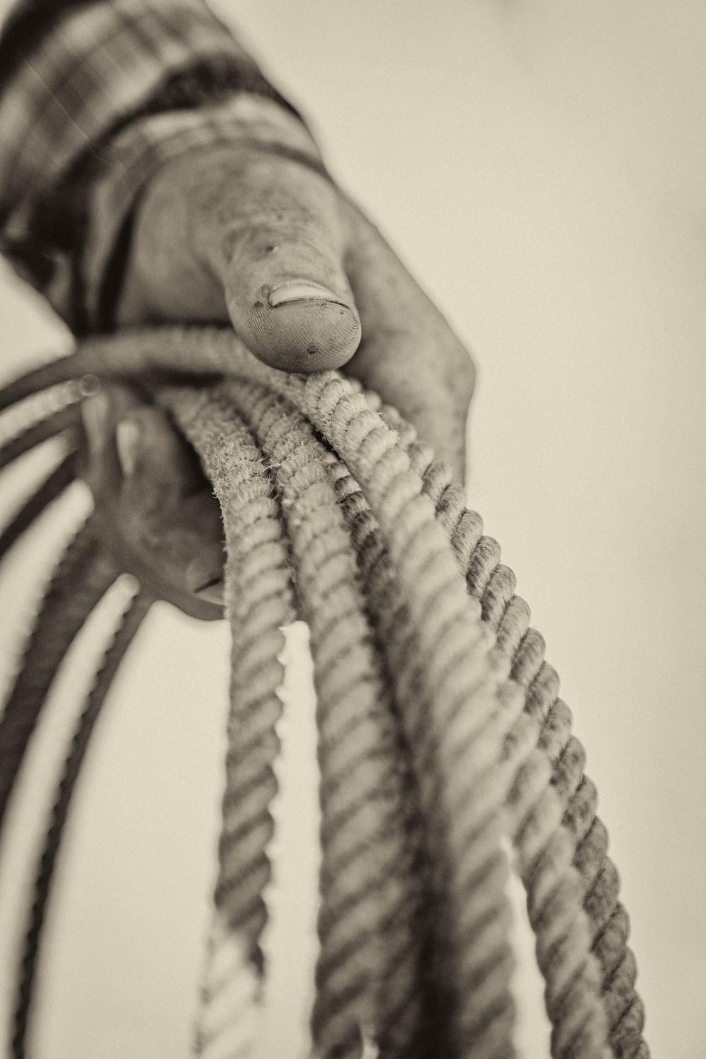 Hand on Rope KAC7862tt.jpg