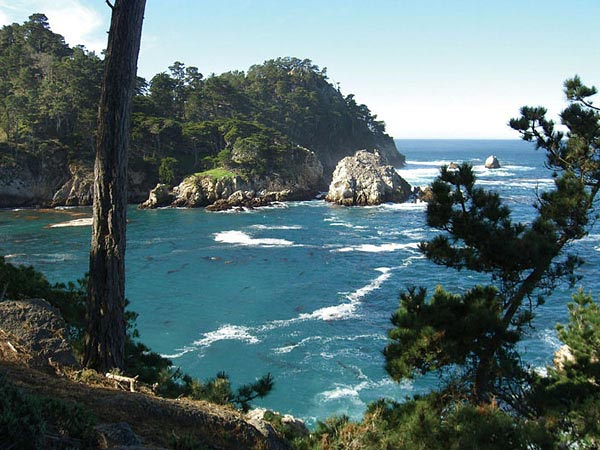 Point Lobos.jpg