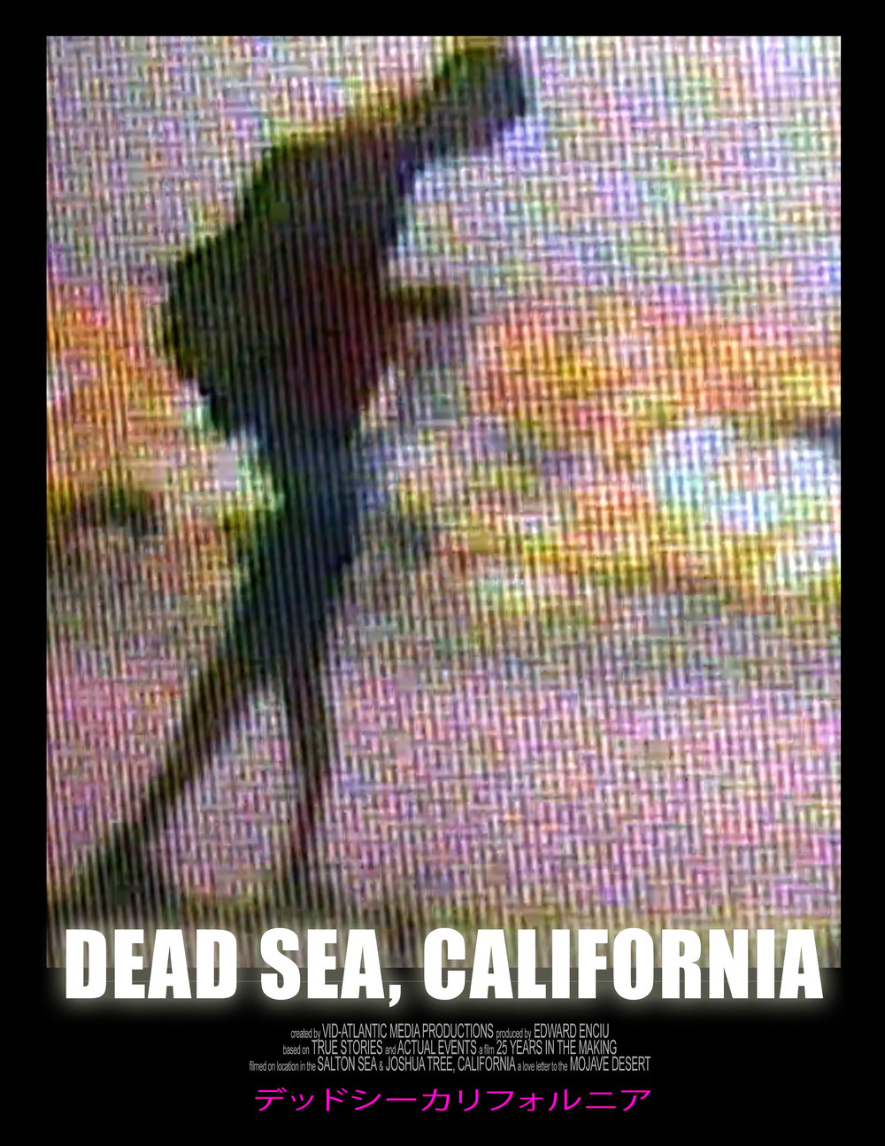 Dead Sea Calif poster BEACH WALKER 092017.jpg