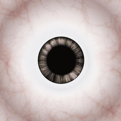 Mini_EyeIn_C2.jpg