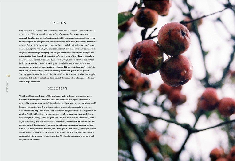 TheGuardian-portfolio35.jpg